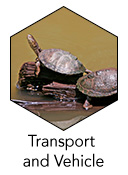 BTEC_Level_1_TransportandVehicle_icon