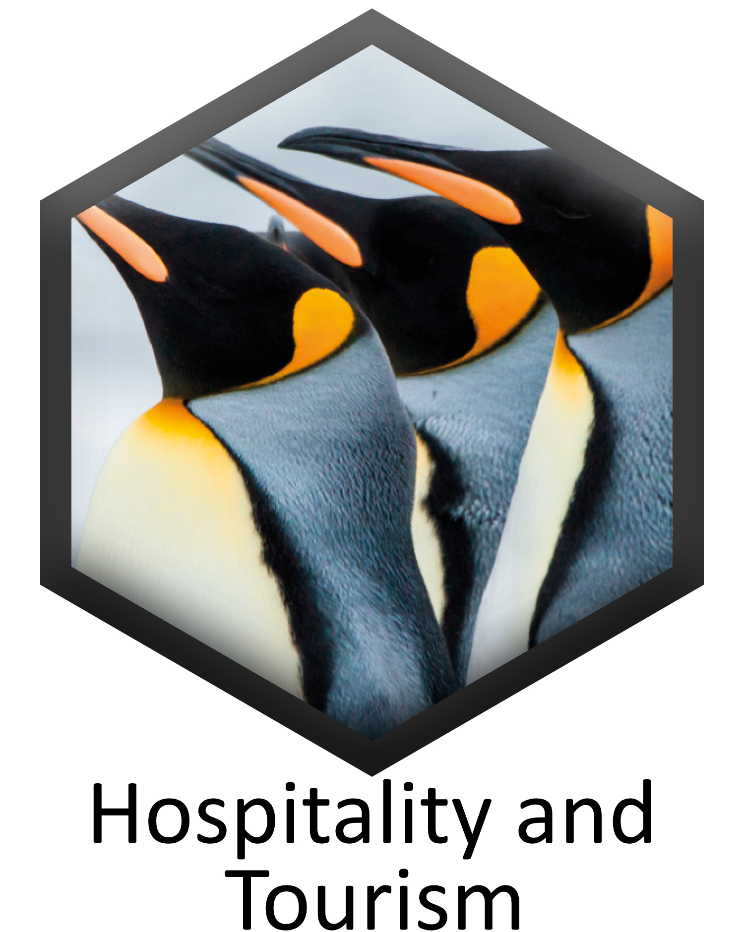 Hospitality and Tourism specification