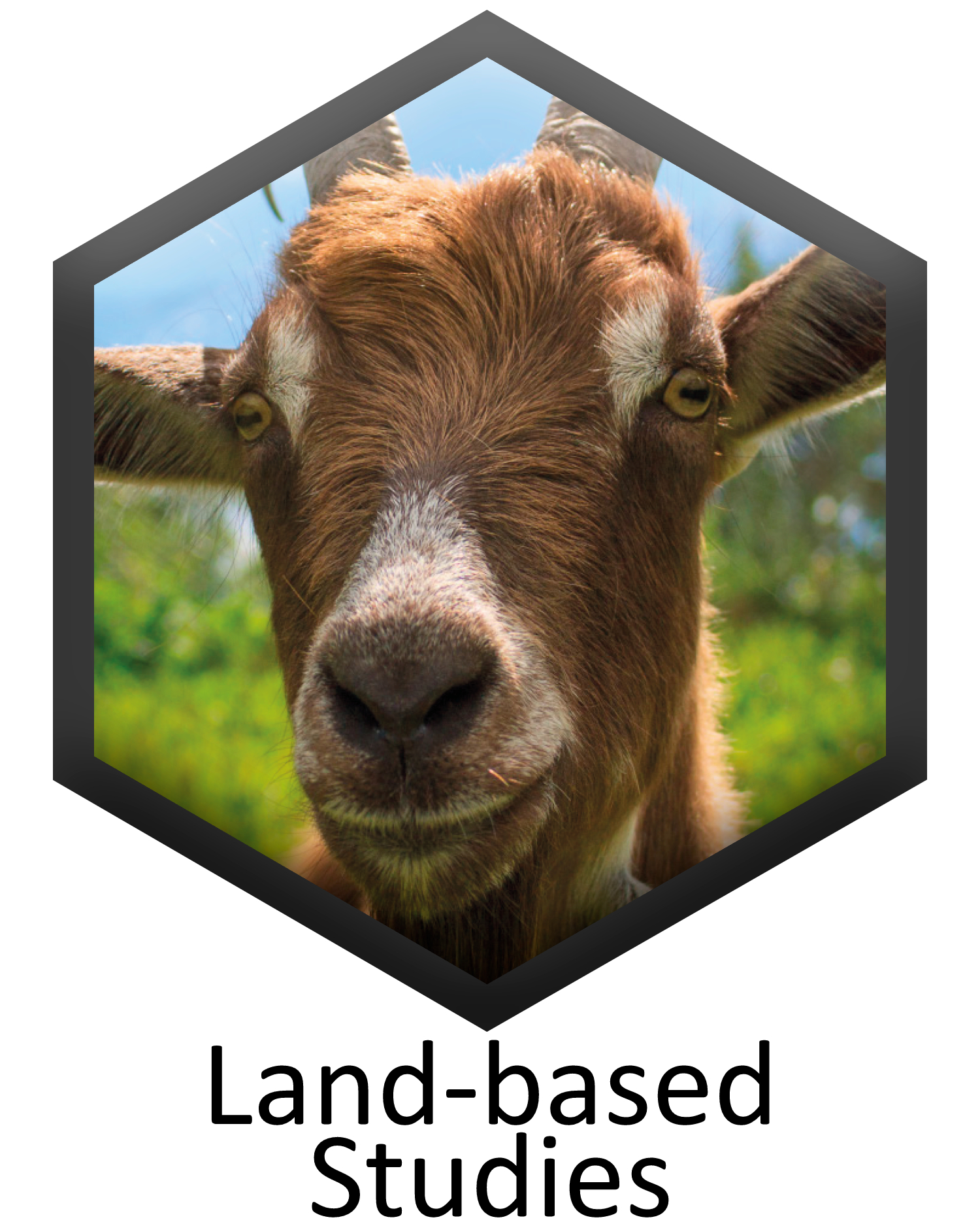 Land-based Studies specification