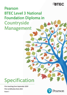 Foundation Diploma specification