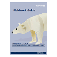 Fieldwork guide B cover